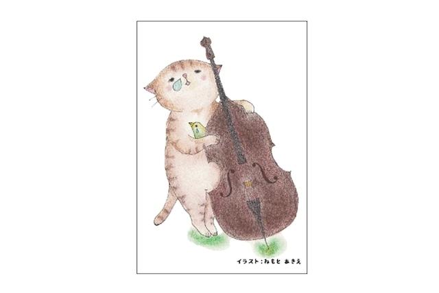 コントラバス猫のポストカード(4枚セット)