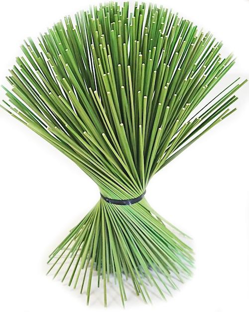 【イ草フラワー ミニ グリーン】Rush Grass Flower Mini Green 17.5cm