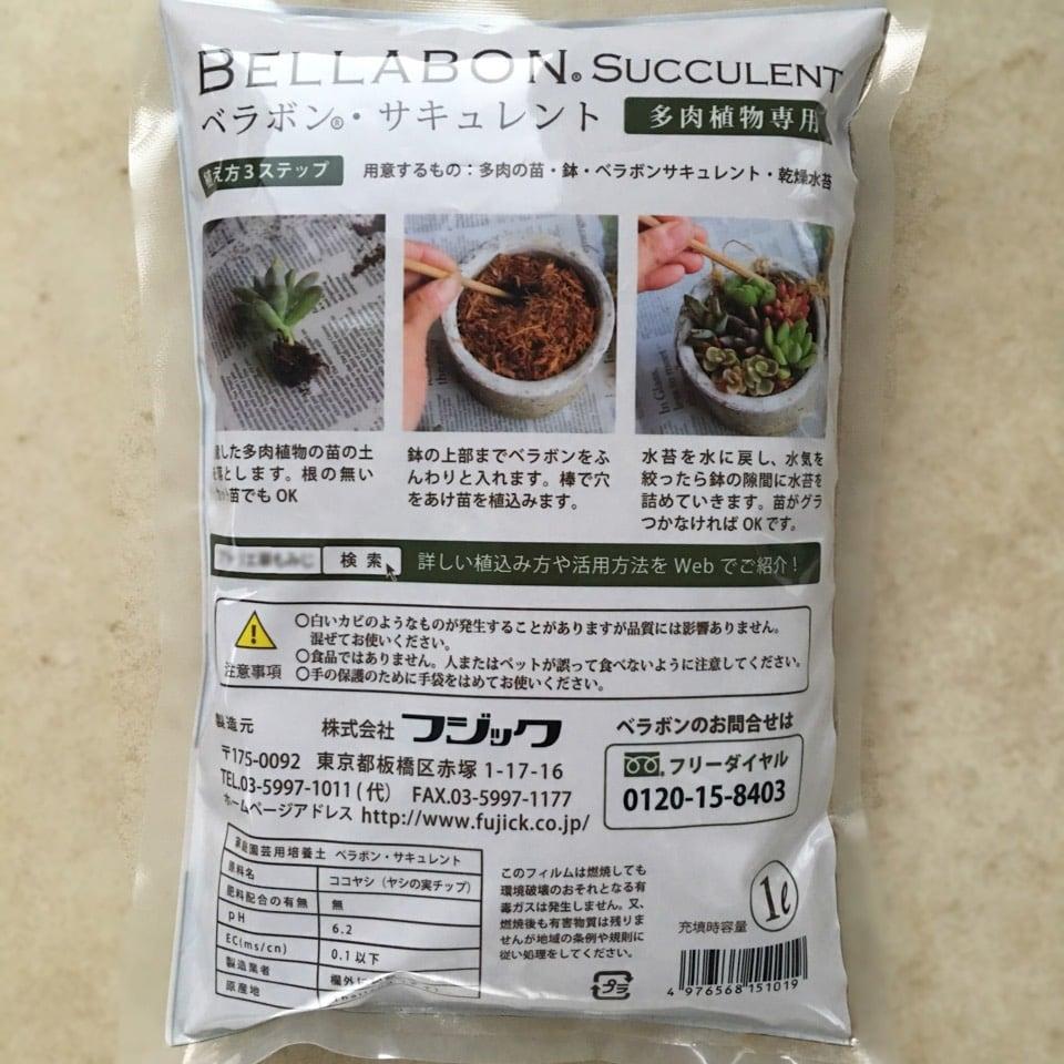 【ベラボンサキュレント】多肉植物ギャザリング寄せ植え用1リットル - 画像2