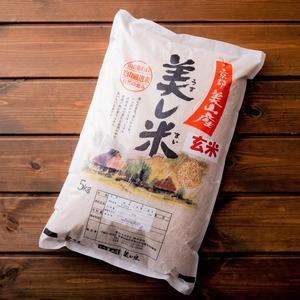 【新米】美山産コシヒカリ 玄米5 kg