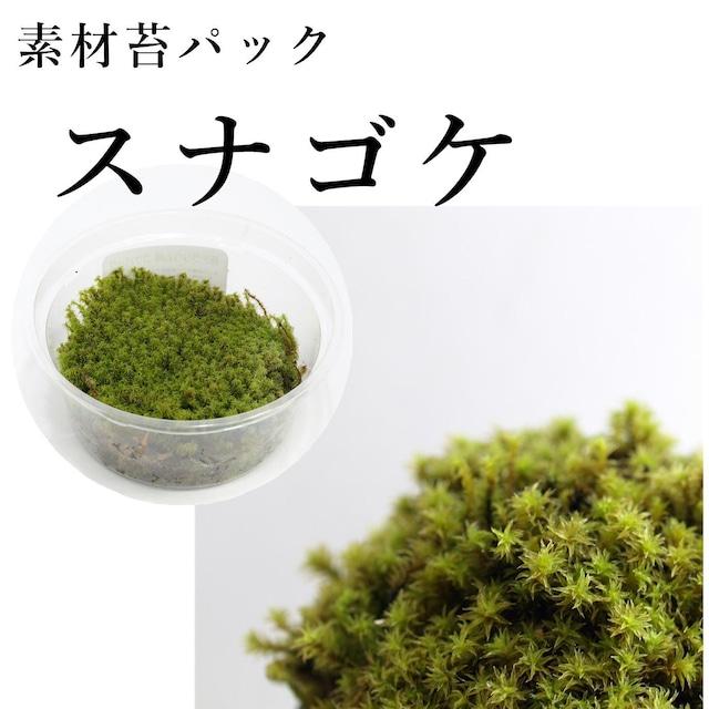 スナゴケ 苔テラリウム作製用素材苔