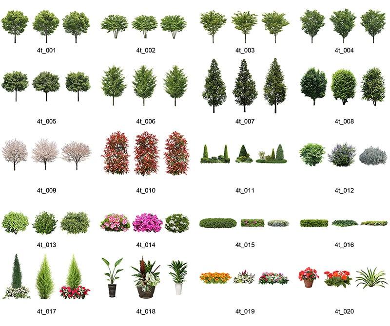 樹木セットSketchUp 4t_set_01 - 画像2