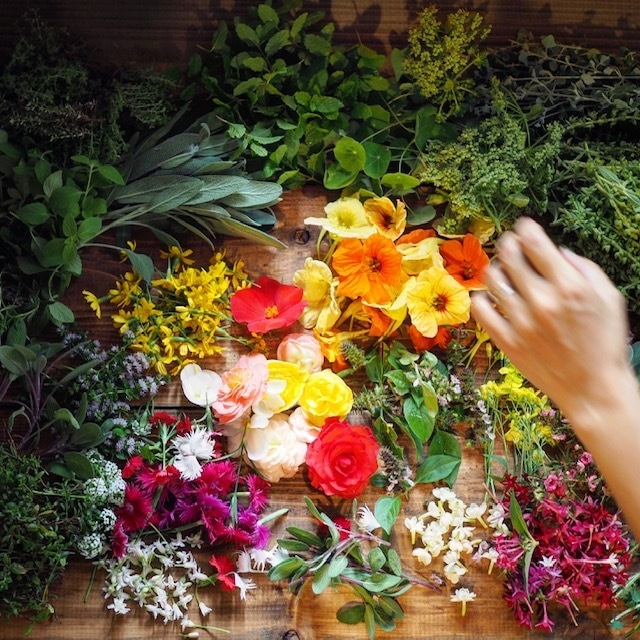 Organic herbs and edible flowers   ハーブ&エディブルフラワーセット Lサイズ