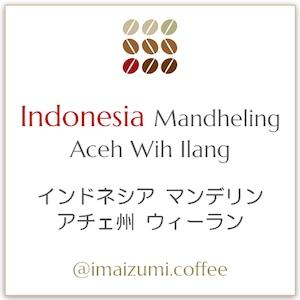 【送料込】インドネシア  スマトラ島 アチェ州 ウィーラン マンデリン - Indonesia Aceh Wih llang Mandheling - 300g(100g×3)