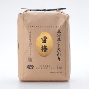 新米【送料込】令和3年産 魚沼産特別栽培コシヒカリ100% 雪椿【玄米5kg】