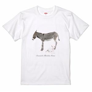 プラ&モモ Tシャツ