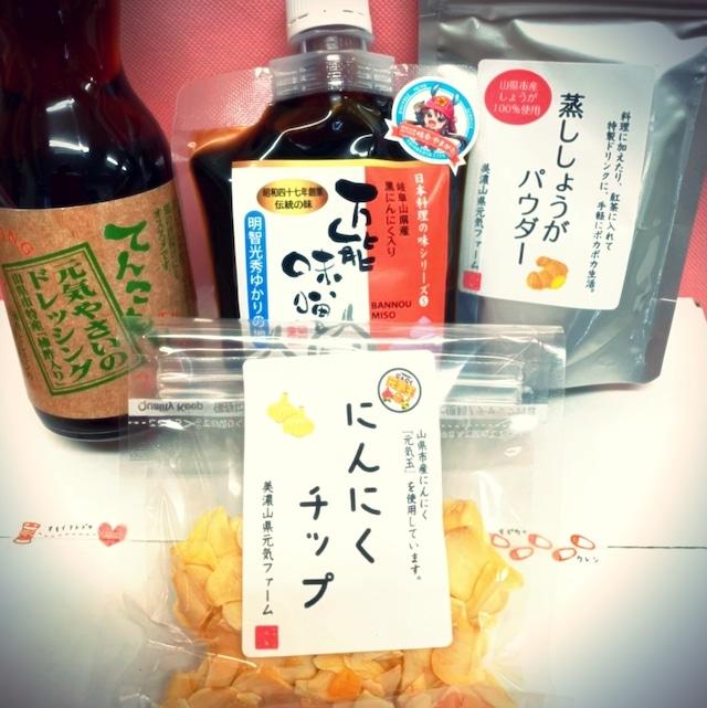 【てんこもりさん】お役立ち調味料お取り寄せ「山県 田舎くっきんぐのとも」4種