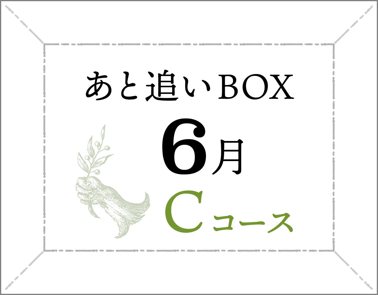 ちょこっと木になる・Cコース【6月のセット】