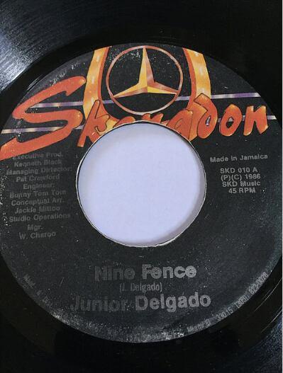 Junior Delgado(ジュニアデルゲイド) - Nine Fence【7'】