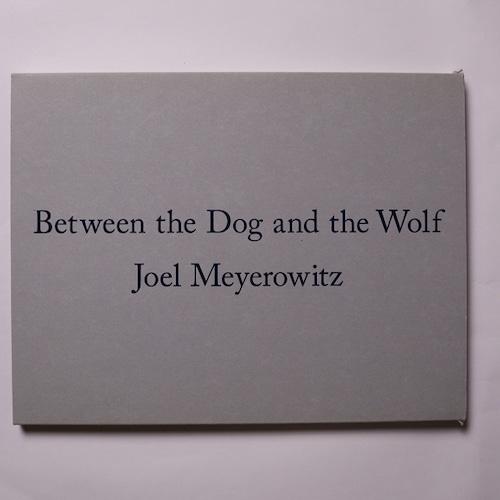 Between the Dog and the Wolf / Joel Meyerowitz Kuroda Design