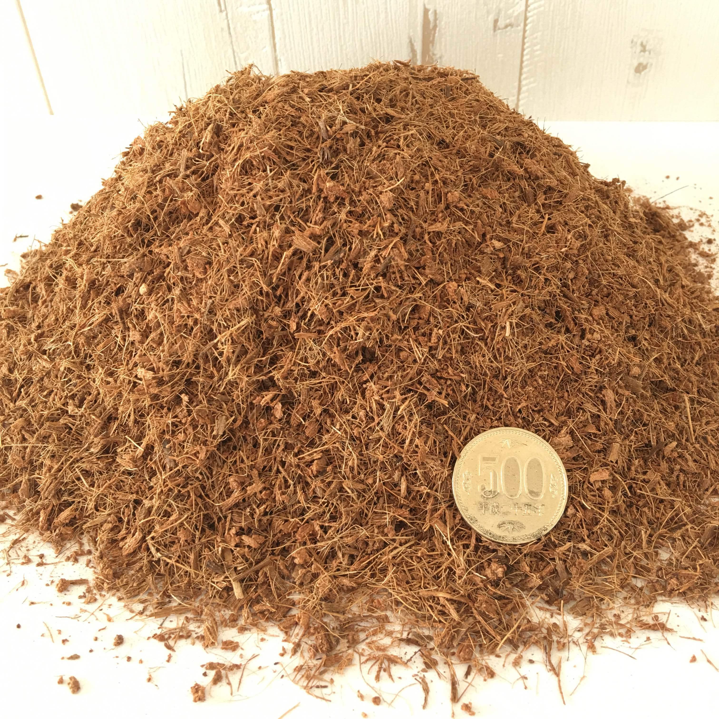 【ベラボンサキュレント】多肉植物ギャザリング寄せ植え用1リットル - 画像3