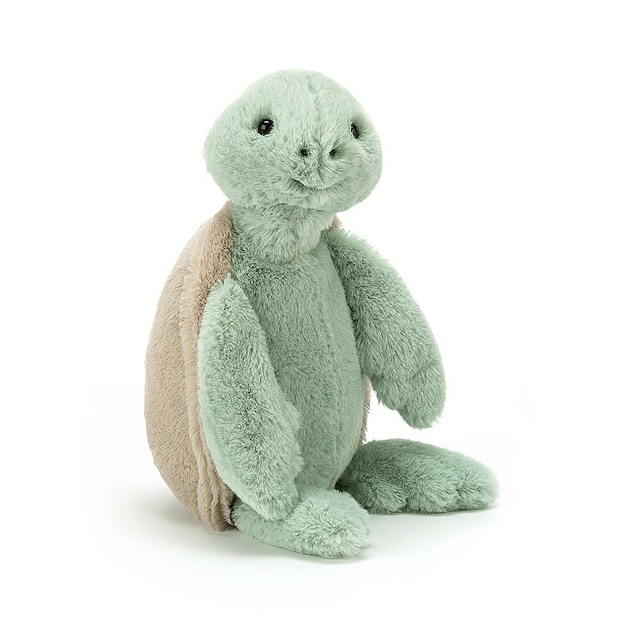 Bashful Turtle Small_BASS6TUR