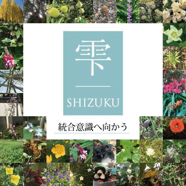 和楽フラワーエッセンス 花カード 「雫」シリーズ 36枚セット