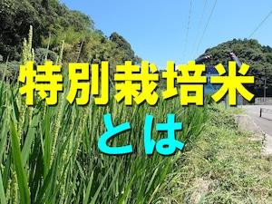 特別栽培米とは、農薬の使用量が50%以下、化学肥料の窒素成分量が50%以下のお米になります。