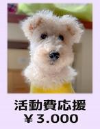 活動費応援(寄付)¥3,000