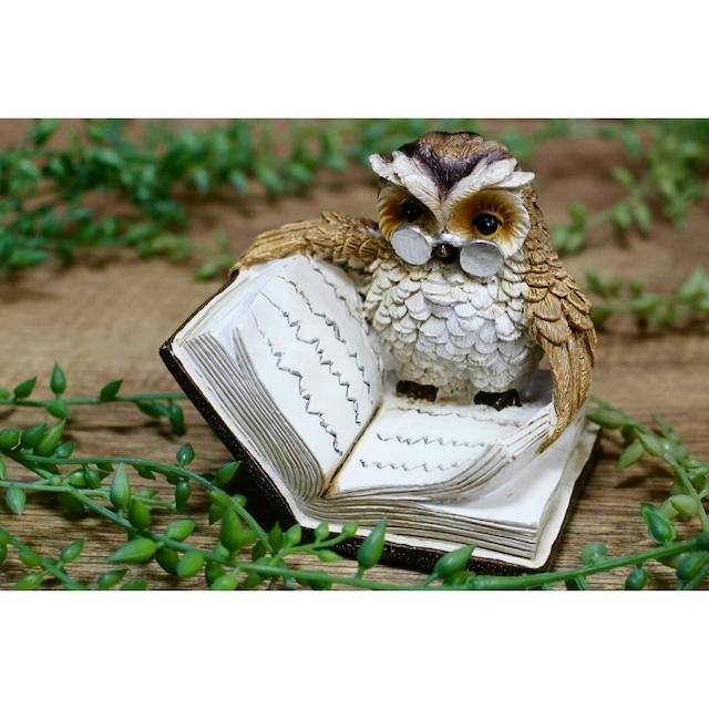 読者する眼鏡フクロウのオブジェ:浜松雑貨屋 C0pernicus