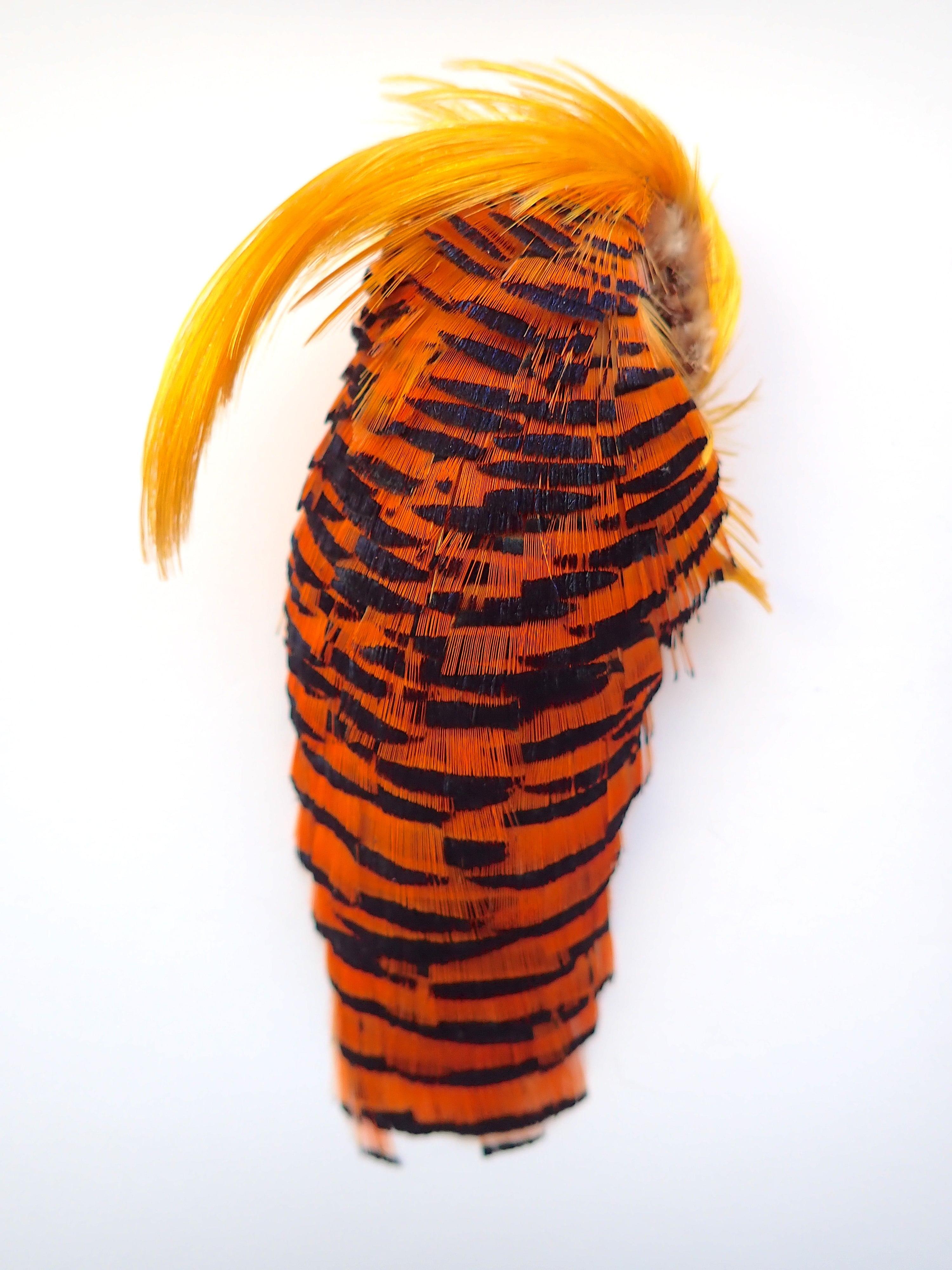 Golden Pheasant Neck Comp. / ゴールデンフェザントネックコンプリート