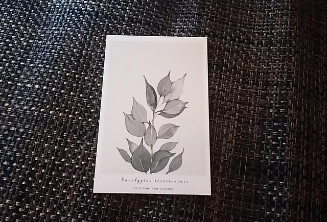 植物 ポストカード A-2