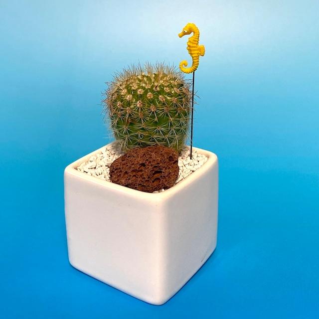 【受注生産品】タツノオトシゴ サボテン su-01tatsunootoshigo 観葉植物 夏 さぼてん カクタス インテリア グリーン ミニチュア かわいい 動物 フィギュア