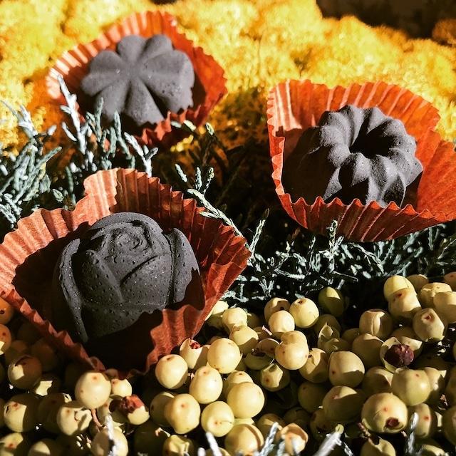 炭のチョコラ(6個入り) KinoKoto