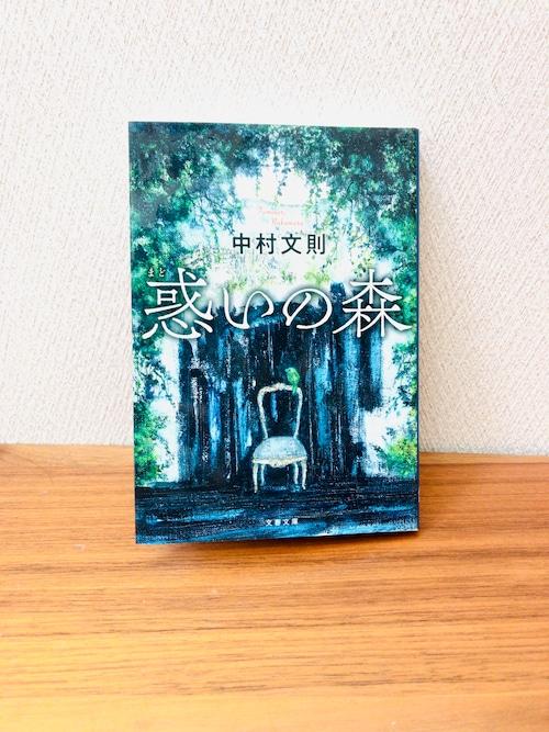 「惑いの森」中村文則著(文庫本)