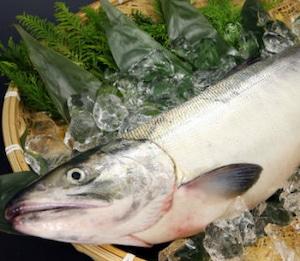 生鮭(オス・約3.5kg)