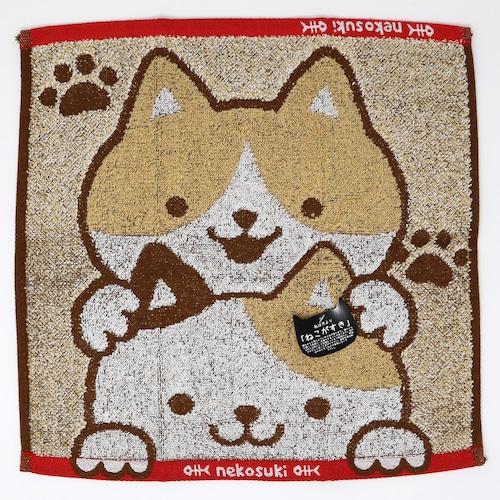 猫ウォッシュタオル(ねこがすきつみねこ)