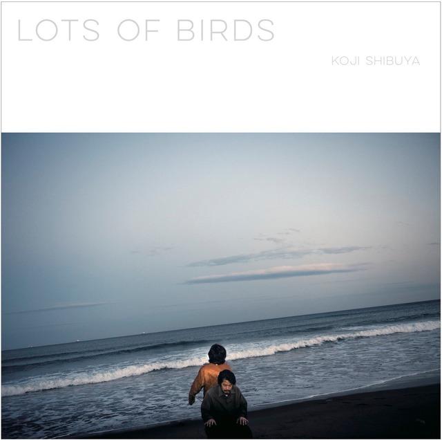 澁谷浩次 - Lots Of Birds (LTD. Solid Silver LP)