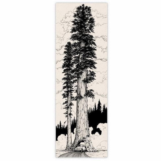 J skis - PIONEER CABIN アートワーク