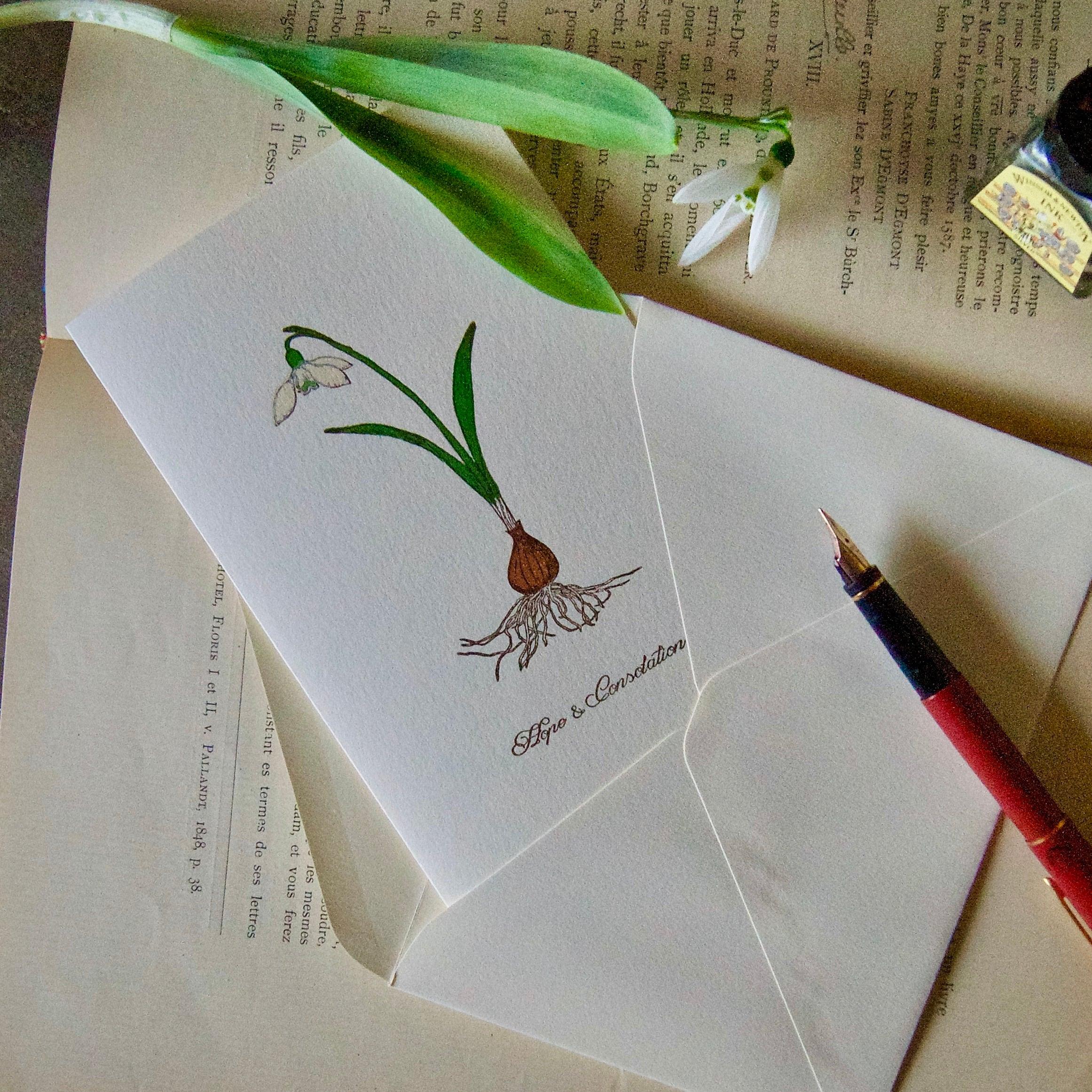 【カード 大】スノードロップ  / カード1枚+封筒1枚/活版印刷