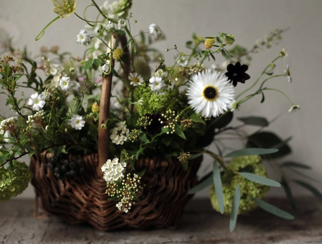 息吹の森のアレンジメント(Naturalgreen arrangement)