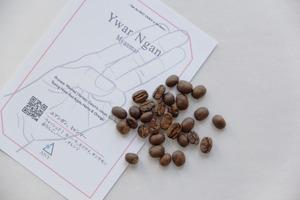 [200g]  Ywar Ngan, Myanmar - Washed / ユアンガン、ミャンマー - ウォッシュド