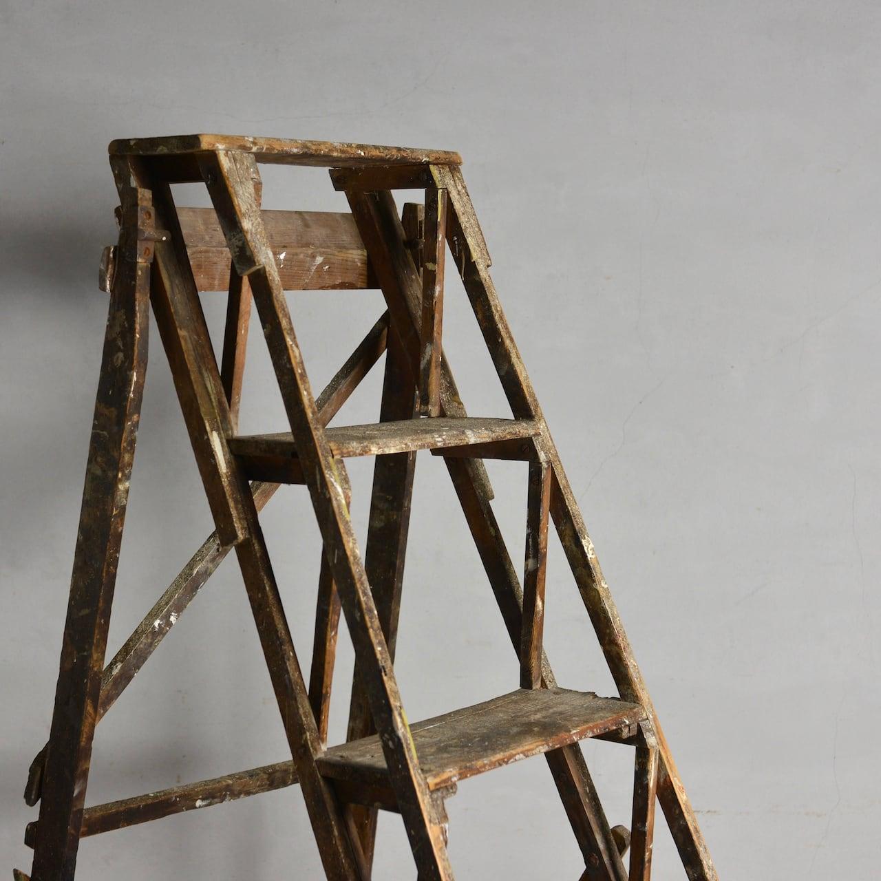 Ladder / ラダー 〈はしご・脚立・什器〉1806-0025