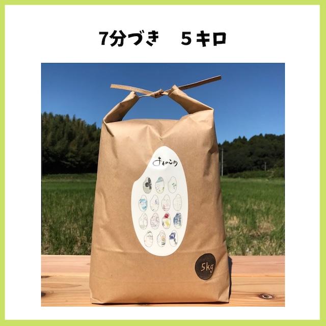 農薬も化学肥料も使わないで育てたお米【7分づき 5kg】