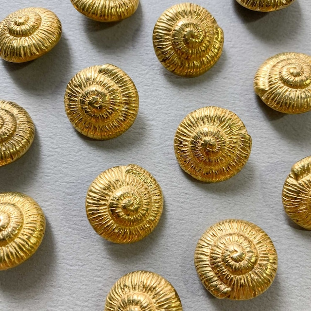 Duaオリジナル 渦巻貝の真鍮ボタン
