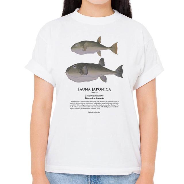 【サバフグ・カナフグ】シーボルトコレクション魚譜Tシャツ(高解像・昇華プリント)