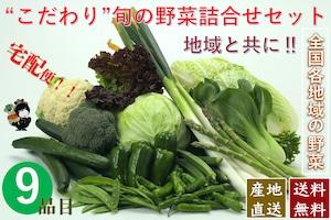 こだわり旬の野菜詰合せセット【9種類】宅配サービス【送料無料】