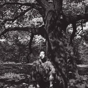 SHITSUKI Original Print Photo(B)