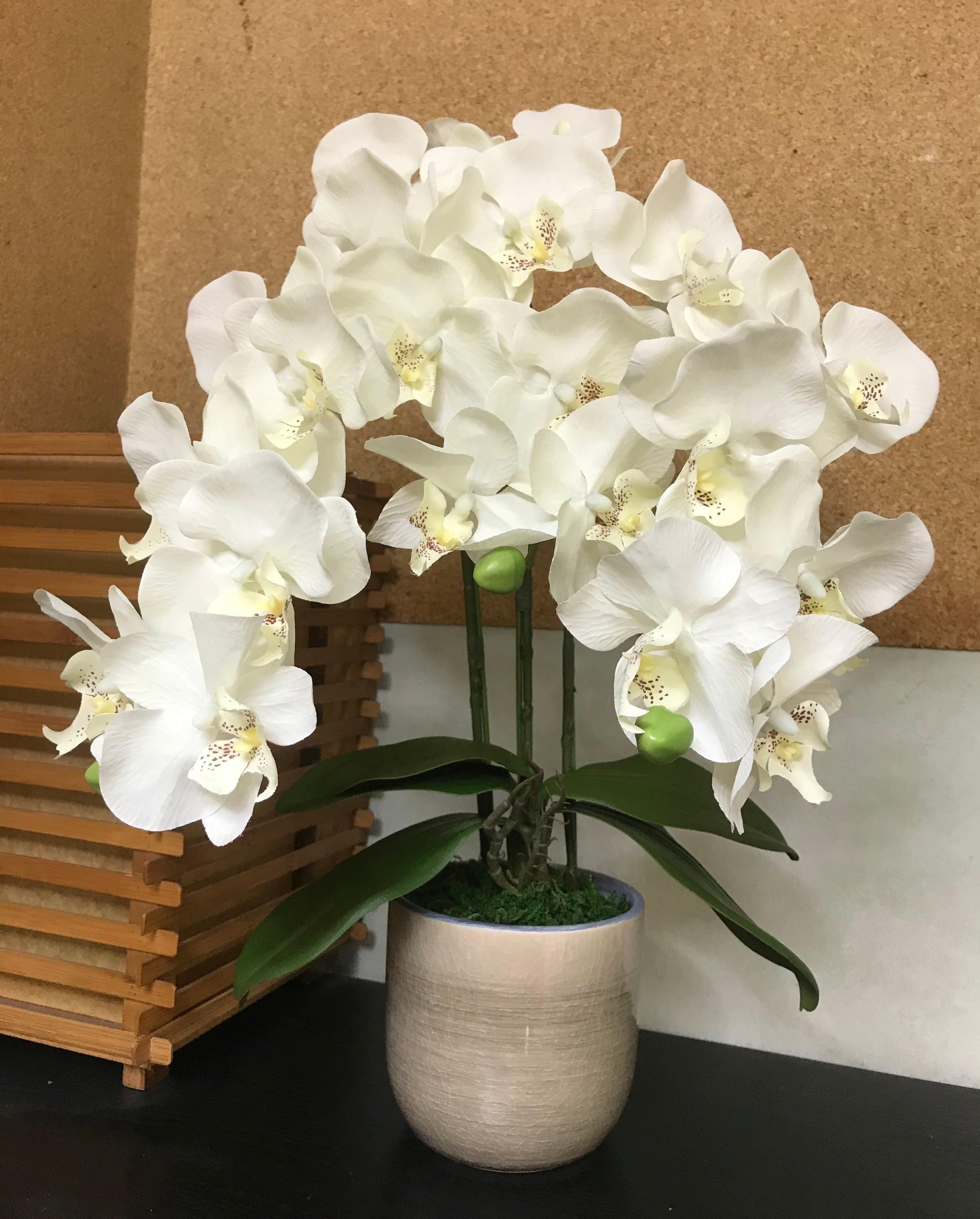 アーティフィシャルフラワー胡蝶蘭鉢植 3本立 M01