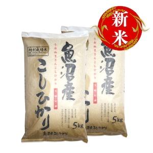 魚沼産コシヒカリ 10kg(5kg×2袋)