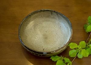 白斑 中鉢/鶴田季子