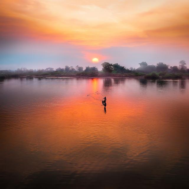 インドネシア ワハナロングベリー 100g