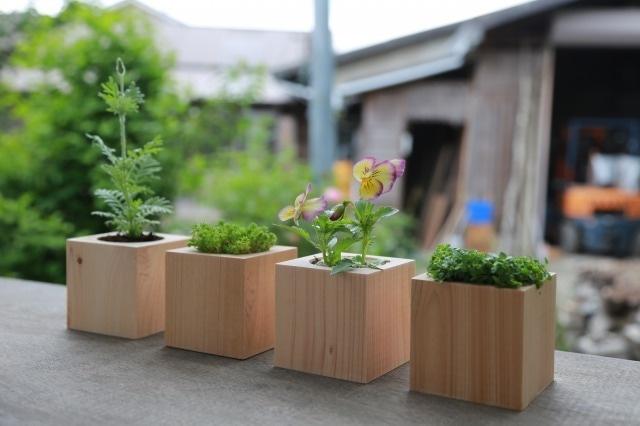 ヒノキの植木鉢