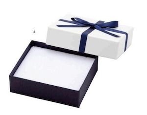 アクセサリー紙箱 リボン付きフェザーボックス ピアス・リング・ネックレス切り込みスポンジ付き 6個入り 7344-REP