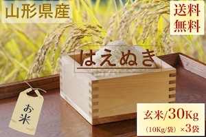 山形県産【はえぬき】玄米 30Kg/袋【送料無料】