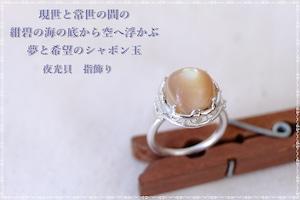 夜光貝 指飾り