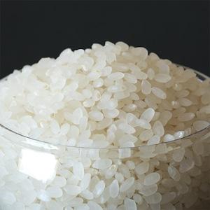 門崎 めだか米 2kg(特別栽培米)7分づき