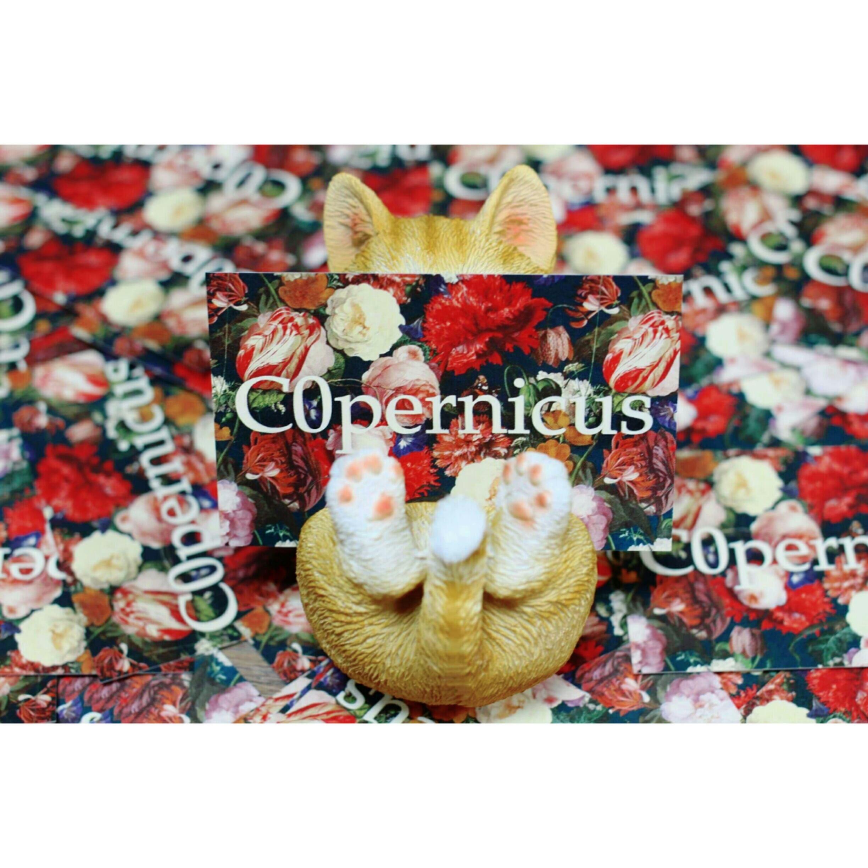 茶トラネコスマホスタンド兼カードスタンド:浜松雑貨屋 C0pernicus