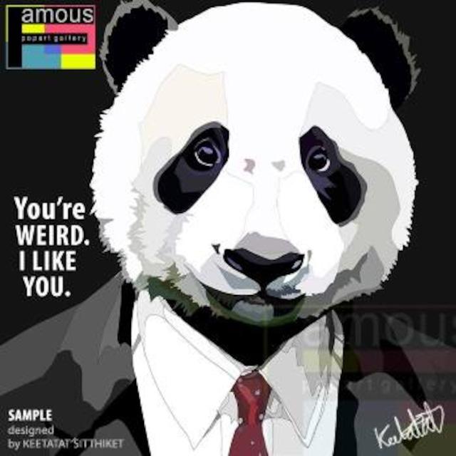 【パンダスーツ】Mサイズ26cm [PAPAN_OT0008] PANDA SUIT