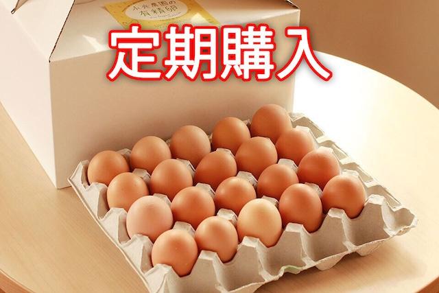 【定期購入】永光農園の平飼い有精卵 20個入り